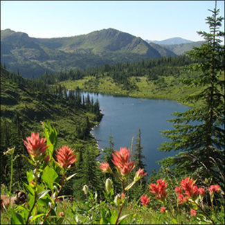 Looking down on Pearl Lake with crystal blue water and wildflowers blooming in the foreground.