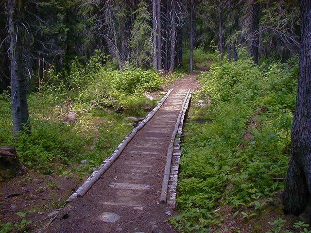 State Line Trail #738 - Hoodoo Pass to Fish Creek